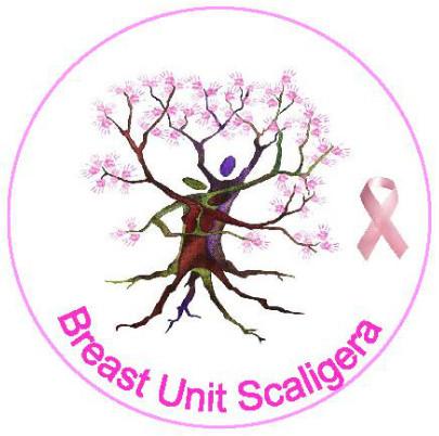 logo_breast_scaligera.jpg